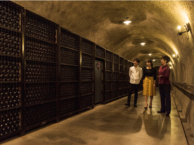 ワイン貯蔵庫見学ツアー